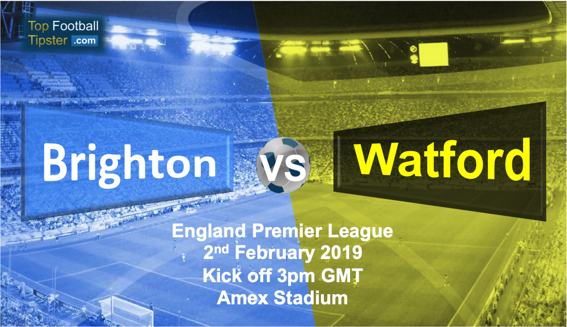 Brighton vs Watford: Preview and Prediction