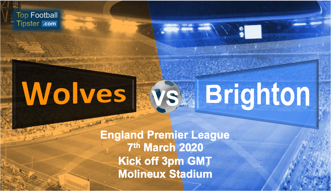 Wolves vs Brighton: Preview and Prediction